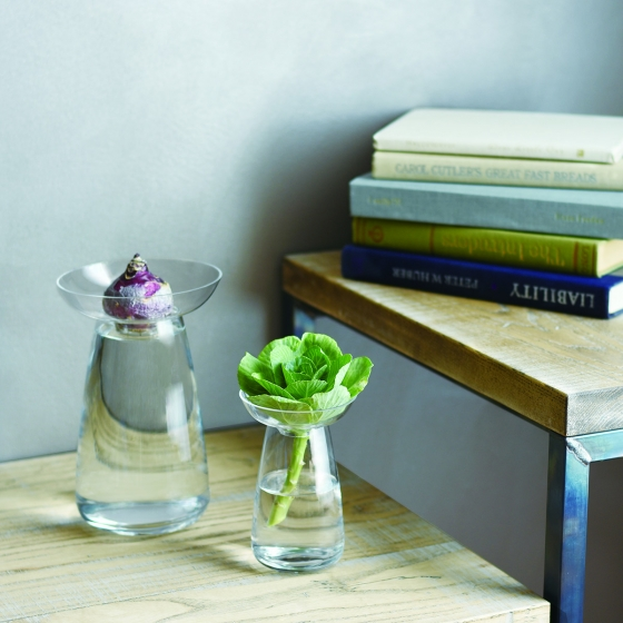 Vase à hydroculture