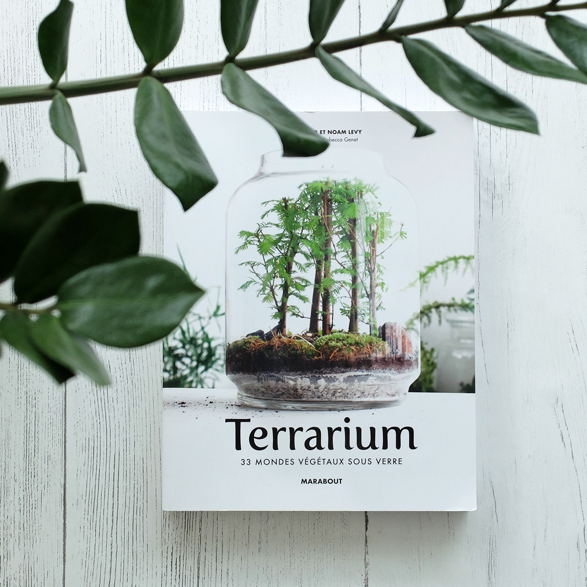 livre terrarium les raffineurs. Black Bedroom Furniture Sets. Home Design Ideas