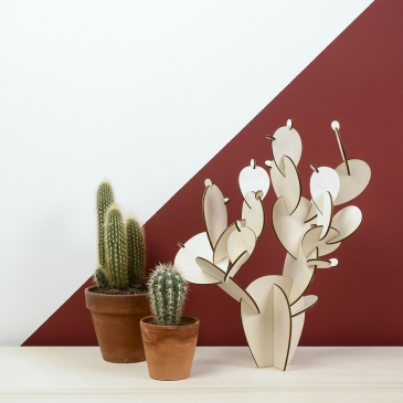 Cactus à assembler